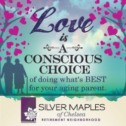 Silver Maples Senior Living /></a></li><li id=