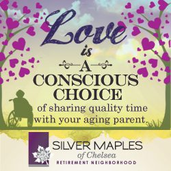 Silver Maples Senior Living /></a></div></div><div class=