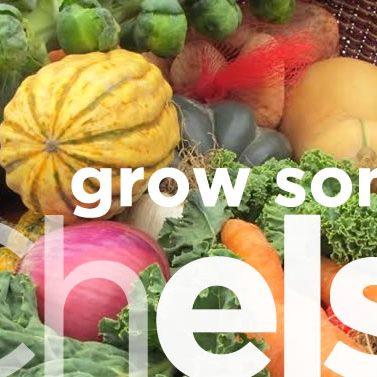 Grow-Farm-Chelsea_Banner
